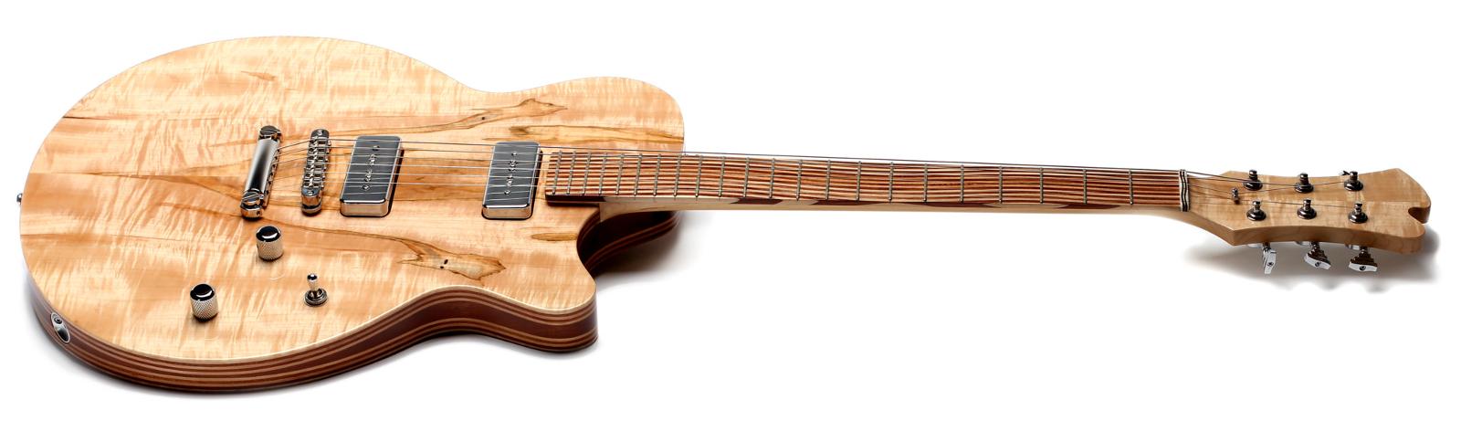 Guitar - Roxxy 2