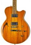 Guitar - Roxxy